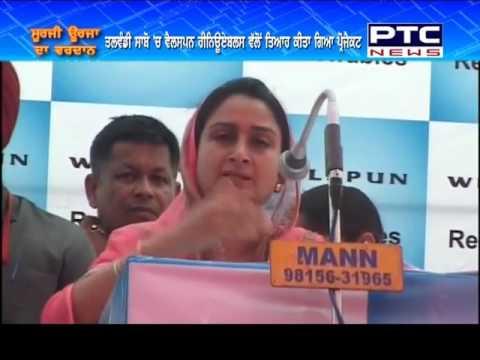 Solar Power Revolution | Punjab's Largest Solar Plant Inauguration