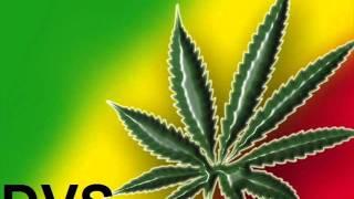 Por cultivar marihuana (con letra)