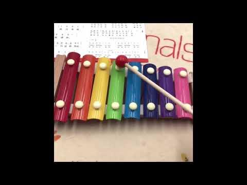 Đồ chơi âm nhạc cho bé - Đàn gõ Xylophone 8 thanh - Quatructuyen.com