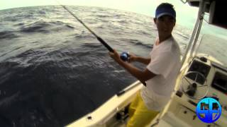 Offshore Live Bait Fishing for Kingfish/ King Mackeral