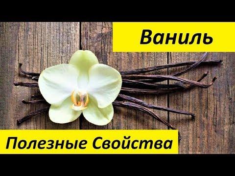 Вопрос: Ваниль и ванилин как растет пряность?