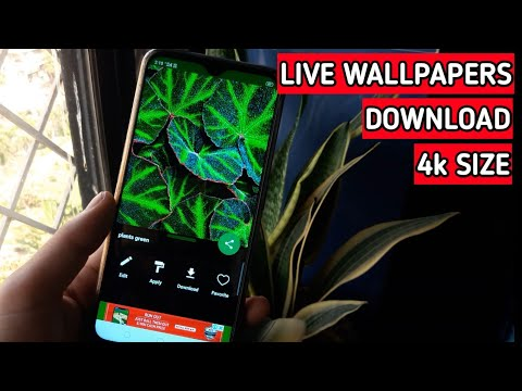 Download 4K Size HD Wallpapers For Your Android Phone | HD Quality Live Wallpapers