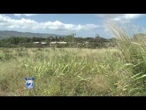 Mixed-use development proposed for empty Haleiwa lot