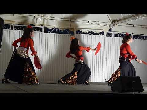 Baile flamenco Fiestas Zaidin Granada