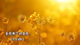 01佛陀-06.菩提樹下得菩提[覺心法師]