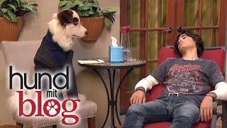 Hund mit Blog - ab dem 24.11. täglich im DISNEY CHANNEL