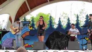 Indian folk music - Summer Solstice Aboriginal Arts Festival June 21, 2014 in Ottawa