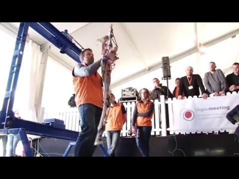 P. Doffémont - équi-meeting maréchalerie 2015 - Test sous presse des postérieurs