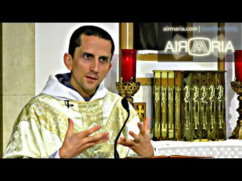 Use Rosary Power to Perfect Your Prayer - Aug 08 - Homily - Fr Matthias