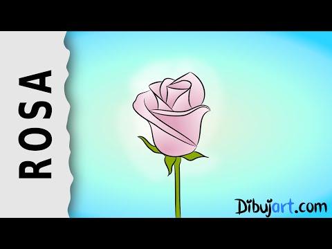 cómo-dibujar-una-rosa-#4---serie-de-dibujos-de-rosas