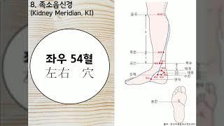 하루 5분 경혈 족소음신경 요약(#01)_Kidney Meridian summary(#01)