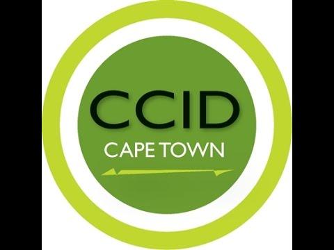Cape Town CCID - Keep It Clean Campaign - Cigarette Bin Maintenance - Nolukholo Njemla