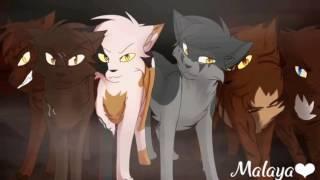 Коты Воители-Востань(Skillet cover)