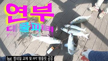 인천 서해 안 숭어낚시 at 연안부두 바다쉼터 포인트 | 괴물 숭어들을 하늘에서 춤추게 만들었어요 mullet #fishing