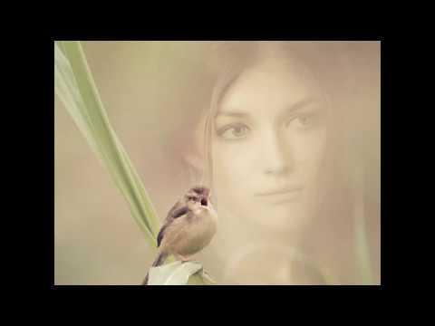 Catullus 2 - Lesbia's Sparrow (English)