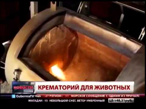 приятно кремировать животное в волгограде цена балкон или лоджию