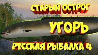 Угорь Старый Острог рр4 русская рыбалка 4 russian fishing 4 rf4 Алексей Майоров