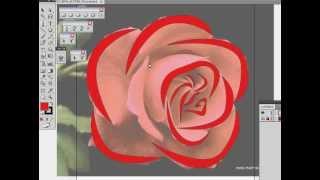 Illustrator Pen Tool_ROSE