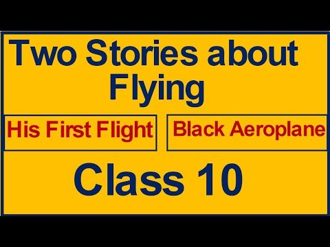 Two Stories about Flying Class 10 First Flight ( Explained in Hindi )