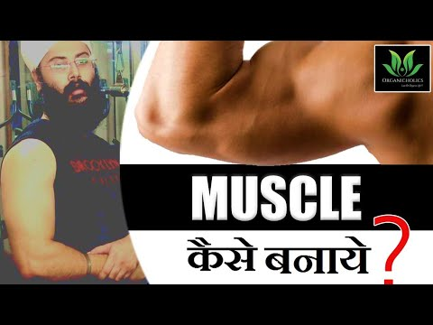 how-to-gain-muscle-fast?-|-muscle-building-tips-for-beginners