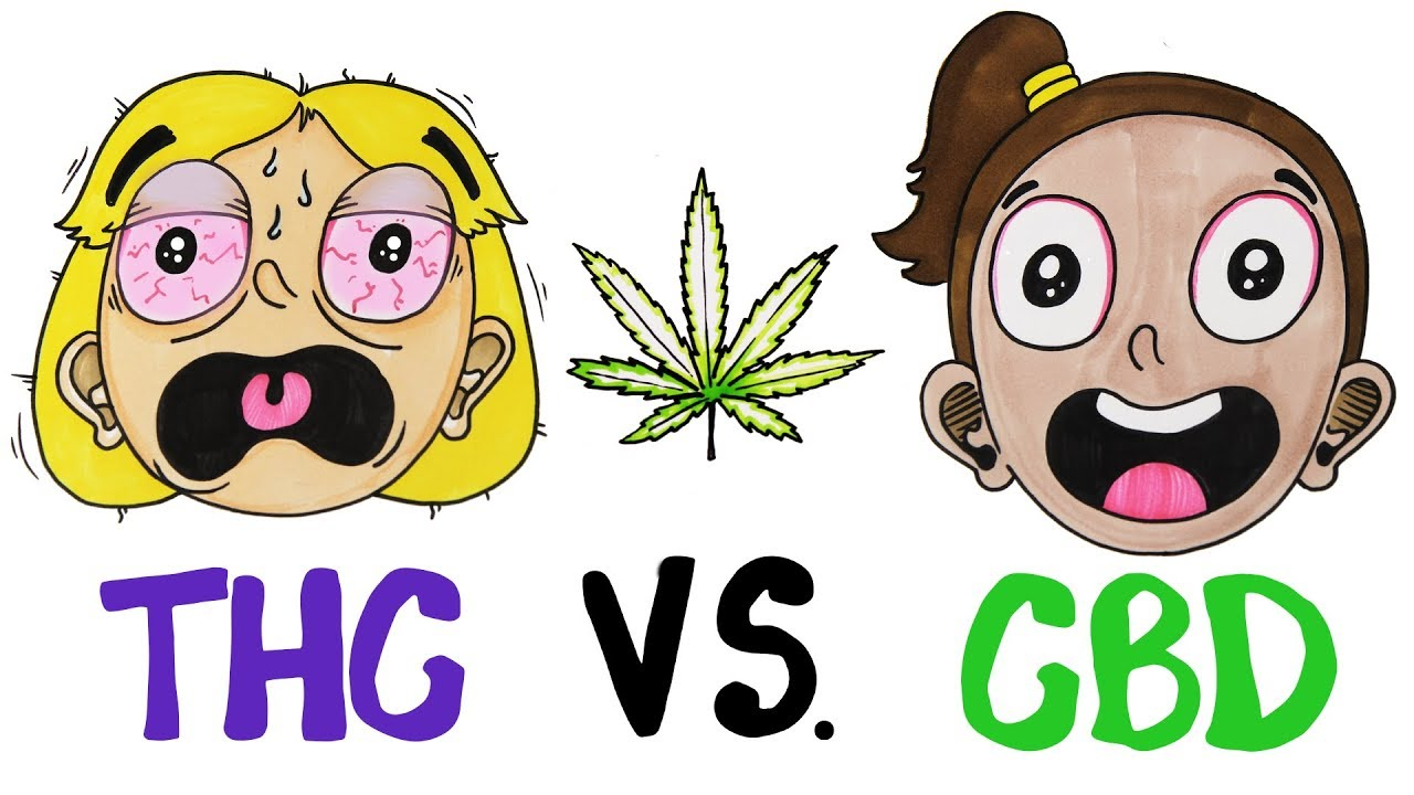 THC vs CBD: What's In Your Weed? - YouTube