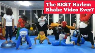 Best Harlem Shake - Capoeira Academy Okinawa Style