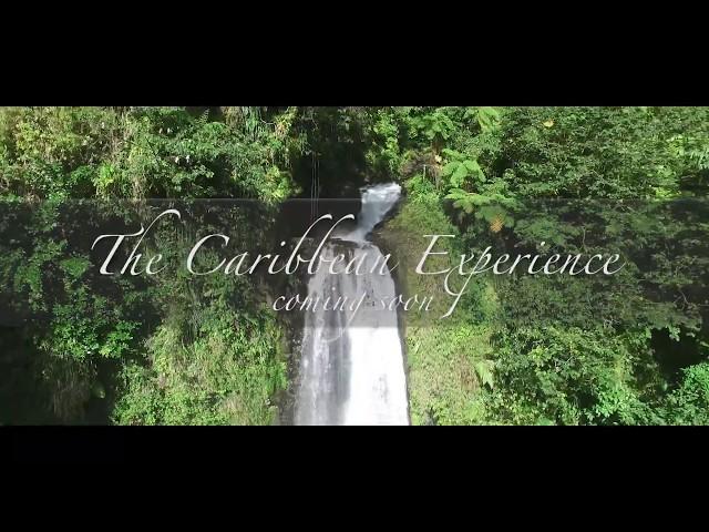 The Caribbean Experience -  Dominica teaser