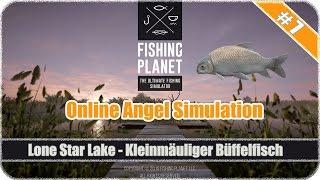 Fishing-Planet #07 Kleinmäuliger Büffelfisch (Karpfen) am Lone Star Lake fangen