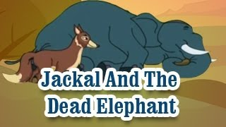 Jackal And The Dead Elephant | Panchatantra Tales | English Animated Stories For Kids