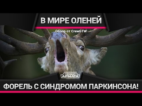 Охотник на оленей Википедия