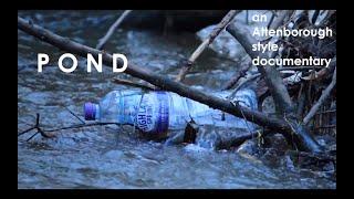POND - A David Attenborough Parody Documentary