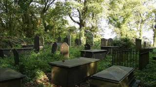 Telephone Call To The Dead (Crossover Talk Session 1)