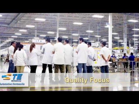 TE Automotive   HMO Video
