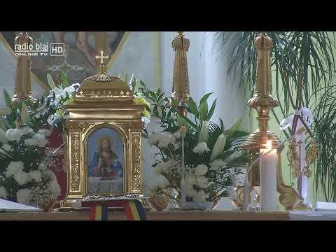 Miezonoptica, Utrenia și Sfânta Liturghie from YouTube · Duration:  2 hours 49 minutes 5 seconds