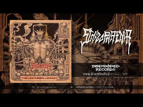 Schizophrenia - The Future We'll Be Living in Autodestruction -  Torture for Them - Disembodied Rec