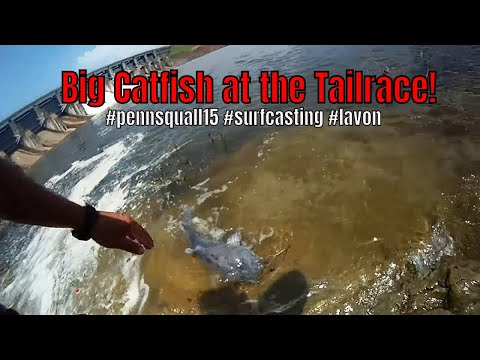 Lake lavon tailrace this round youtube for Lake lavon fishing report