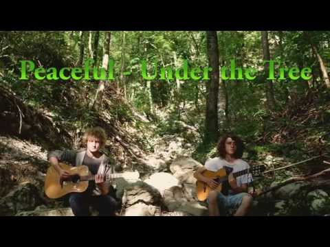 REGGAE ACOUSTIC INSTRUMENTAL - Under the Tree