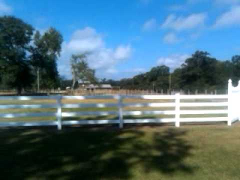 Ranch Land For Sale In Mississippi Youtube