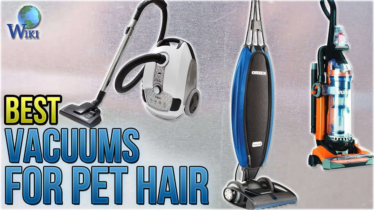 Best Vacuum Cleaner For Pet Hair And Carpet Carpet