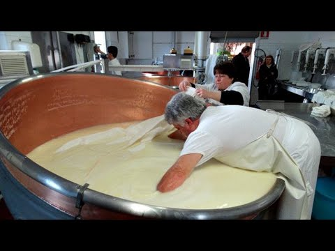 INSIDE THE FACTORY   CHEESE MAKING & DAIRY MAKING