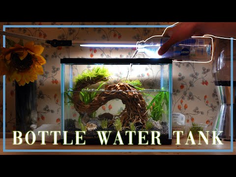 I Filled My Fish Tank With Bottled Water