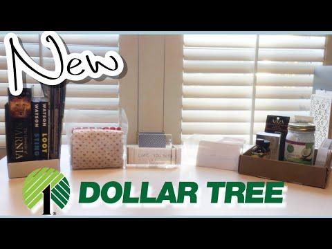✅ DIY Dollar Tree Organization! | Organization on a TINY Budget