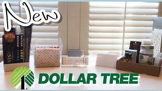 ✅ 5 MUST SEE NEW Organizers & Bins from Dollar Tree 2019 | Extreme Organizing on a TINY Budget
