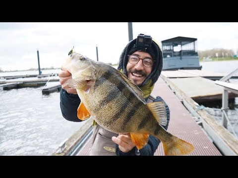 The Holland Fishing Tour