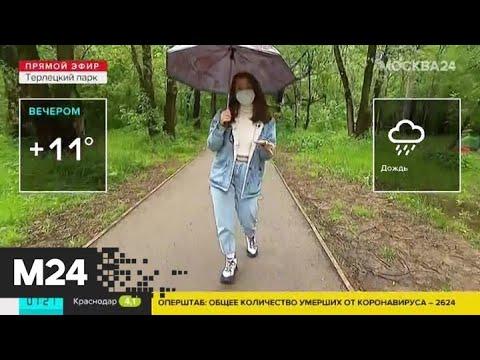 """""""Утро"""": дождливая погода ожидается в столичном регионе 2 июня - Москва 24"""