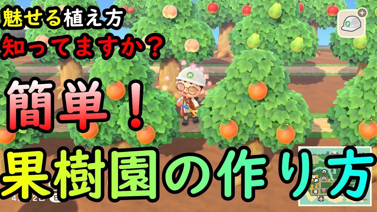 植え の 森 木 あつ 方 果物