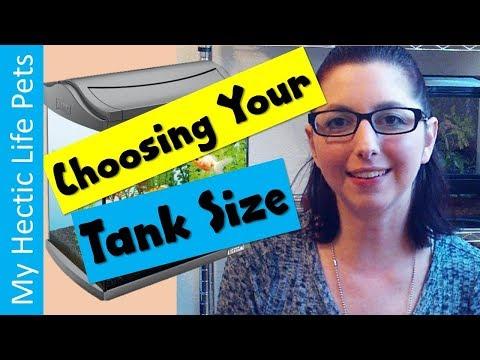 How To Choose An Aquarium Tank, What Size Fish Tank Should You Get