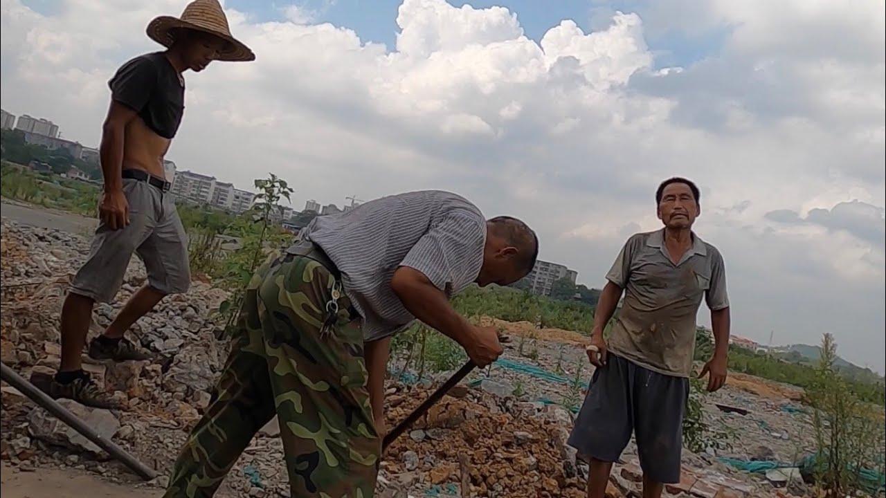 拆掉工廠搞農業:一家大型工廠被拆除,農民在地裡挖廢鐵。