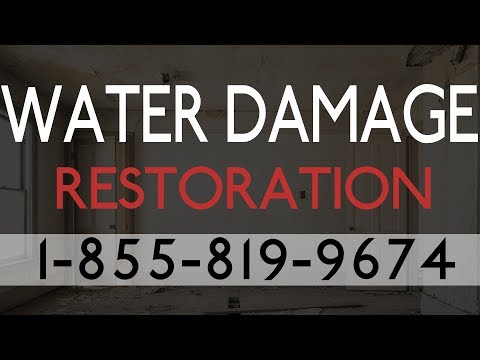 Water Damage Restoration Gibsonton FL | Professional Water Damage Restoration Services