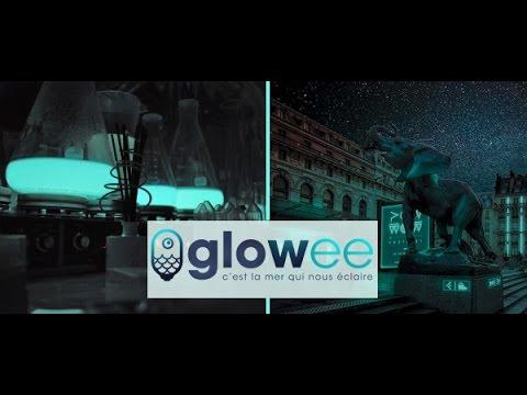 GLOWEE - Le développement depuis la levée de fonds WiSEED